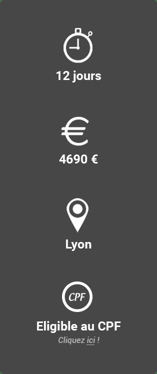 Prix, durée et lieu de la formation coach professionnel équipe Lyon Idéallis